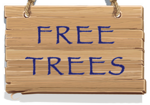 FreeTrees03
