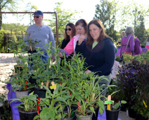 Plant sale group of customers